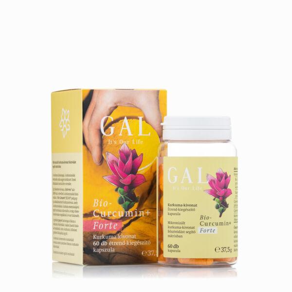 GAL Biocurcumin Forte+ 300 mg x 60 kapszula