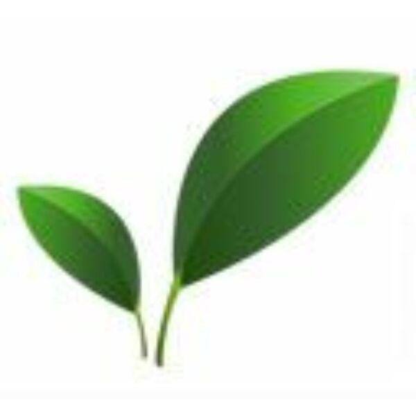 Növényi glicerin 99,5% nagy kiszerelés 500 ml