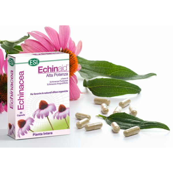 Echinacea (kasvirág) kapszula 30 db - ESI